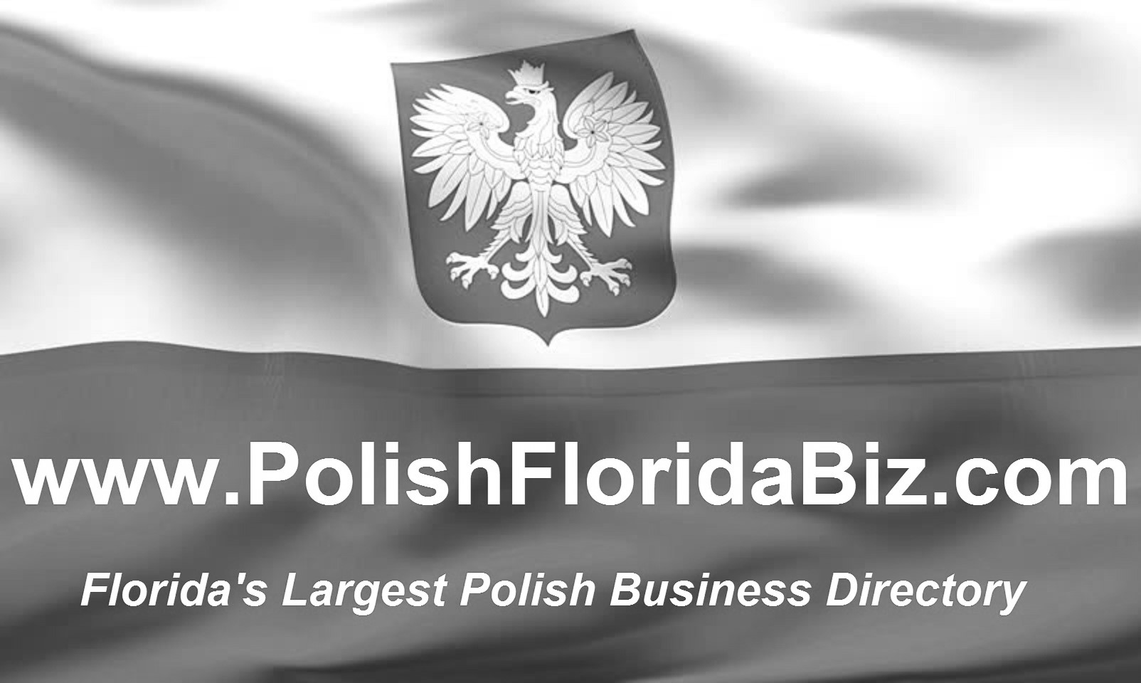 www.polishfloridabiz.com